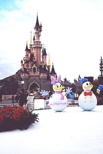 France Disneyland Donald Duck