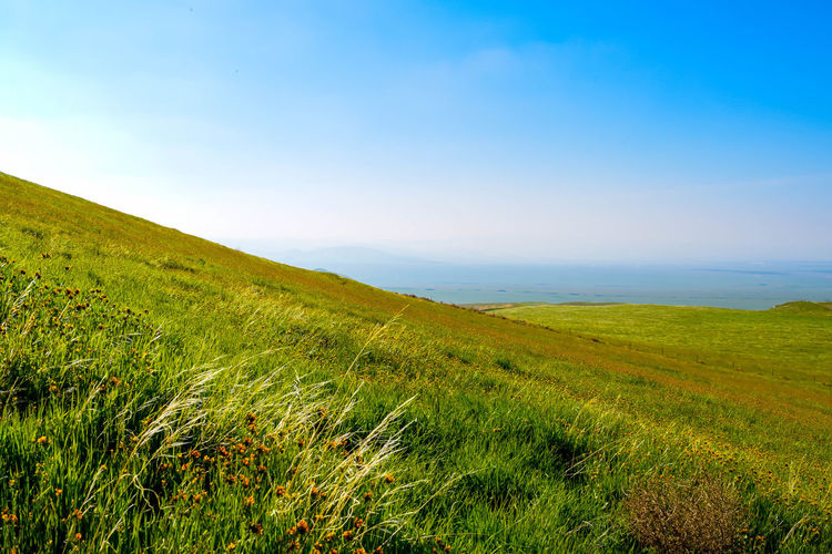 Beauty In Nature Day Field Grass Grassy Grassy Field Grassy Hill Grassyfield Green Green Fields Green Grass Green Grass And Sky Green Grass Blue Sky Hill Landscape Nature Non-urban Scene Outdoors Remote Scenics Tranquil Scene Tranquility