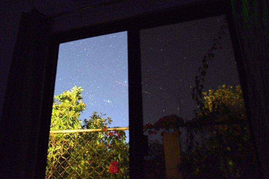 Panglao Lifeinpanglao EyeEm Nature Lover On A Stroll NikonD7500 Nikonphotography Nikon Plant Tree Nature Night Sky Architecture No People Star - Space