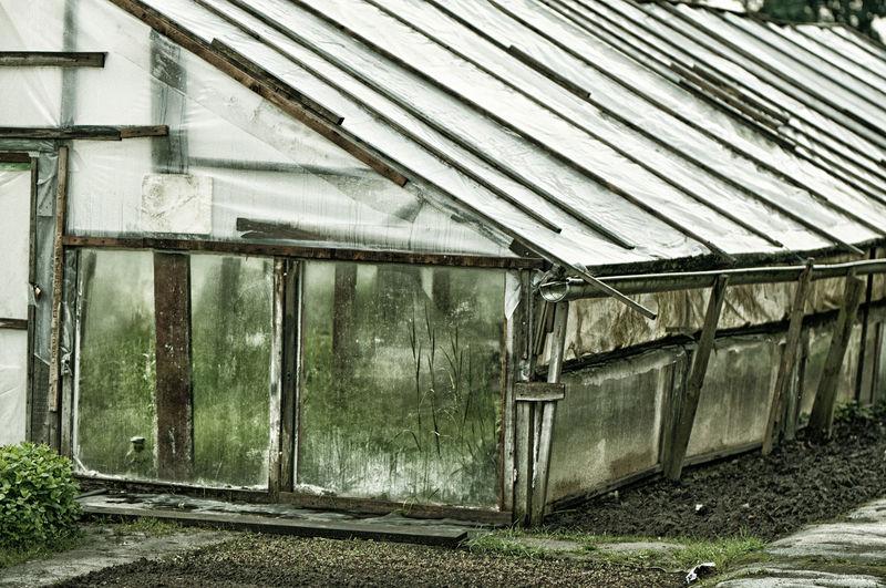 Exterior of greenhouse