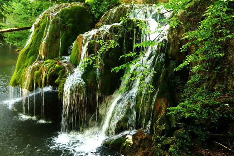 Water Waterfall Beauty In Nature Motion Forest Scenics - Nature Tree Long Exposure Rock Flowing Water Nature Plant Rock - Object Land Blurred Motion Solid Non-urban Scene No People Flowing Outdoors Rainforest Power In Nature Falling Water Running Water