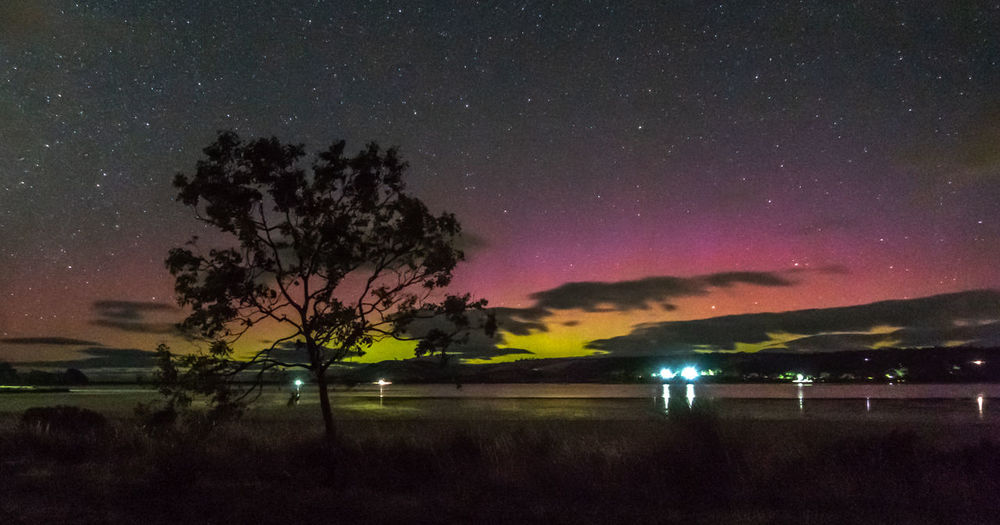 Aurora Australis over a lagoon Aurora Australis Cremorne Astronomy Beauty In Nature Geomagnetic Storm Growth Idyllic Illuminated Lagoon Nature Night No People Outdoors Plant Scenics - Nature Sky Solar Storm Southern Lights Space Star Star - Space Tranquil Scene Tranquility Tree Water