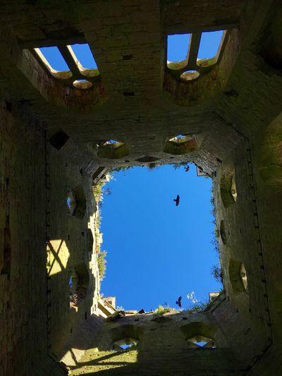 Abbey Ruins Irish Oldireland Crumbling Building Crow Raven Creepy