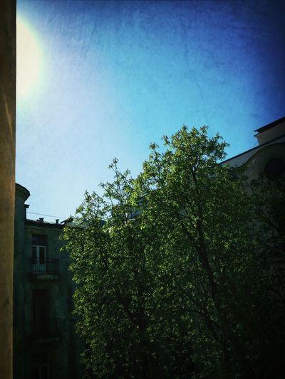 Summer City Altbau