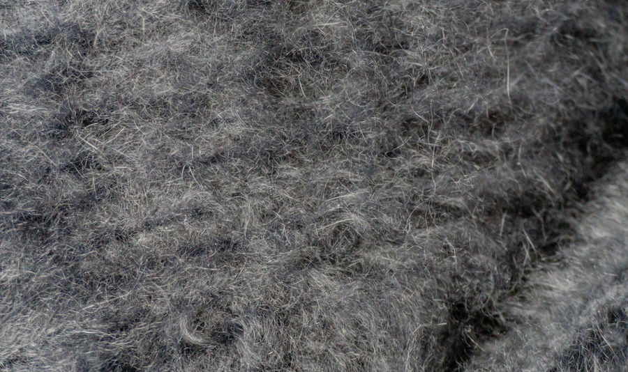 Texture and Background from angora wool Autumn Cardigan Fleecily Homemade Winter Angora Wool Angora Wool Angora Wool Sweater Angora Wool Jacket Background Clothes Jacket Knit Ladies' Fashions Mohair Sweater Natural Fibres Snugly Softness Softy Sweater Texture Warmth Wool