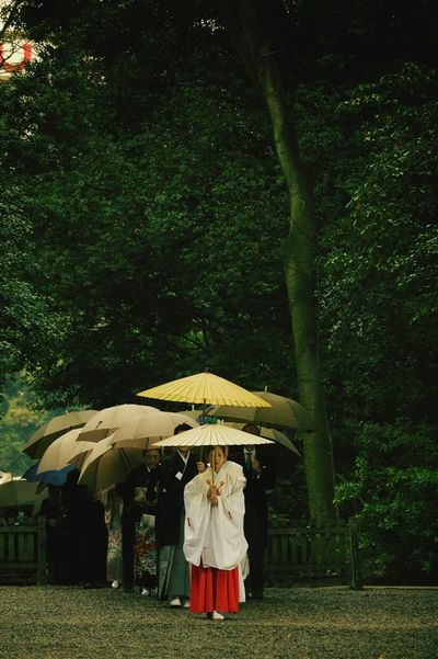 Japanese Wedding Wedding Japanese Culture Japan