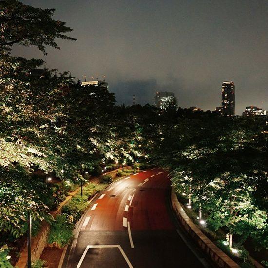 Vscocam Tokyomidtown Tokyowalk Tokyonight Wetbyrain