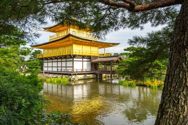 Kinkaku-ji temple in lake amidst trees