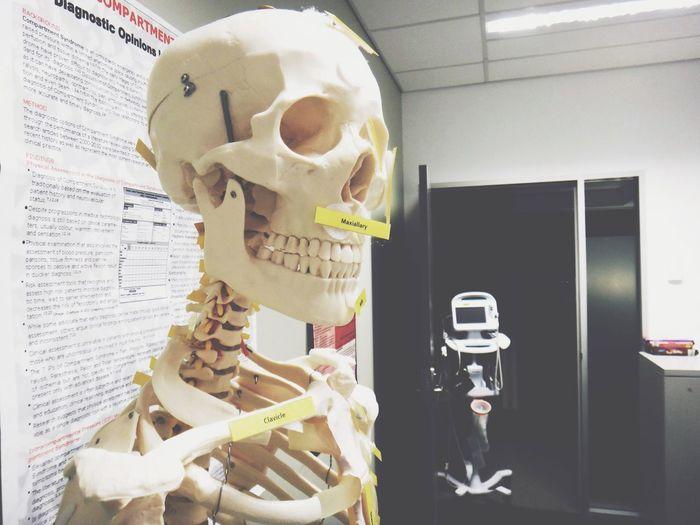 orthopedics | EyeEm