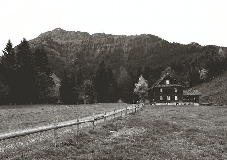 so let the hiking begin! Rigi Isch Badhose Rigi Blackandwhite Grodstubli