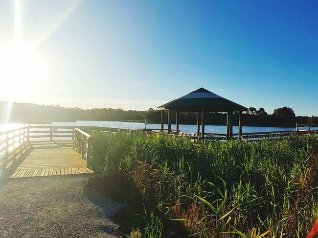 Lilydale Lake