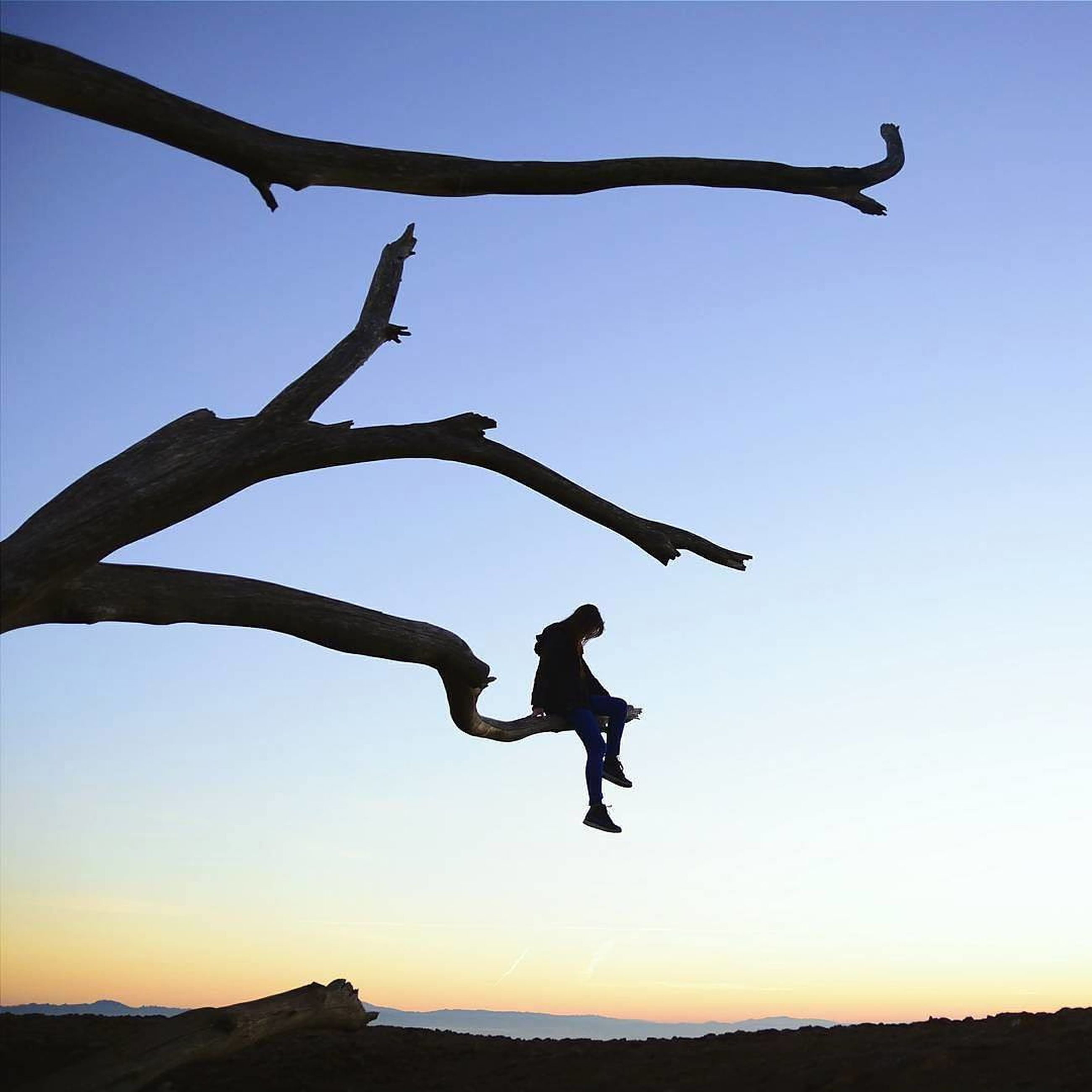 silhouette, mid-air, full length, leisure activity, clear sky, sunset, flying, lifestyles, jumping, sky, arms outstretched, nature, low angle view, enjoyment, freedom, tranquility, tranquil scene, men
