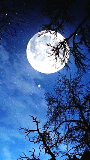 Relaxing All Love All Smiles Allnightparty All Smiles ツ Nature_collection Stars Moon Happy We'll Be All Night