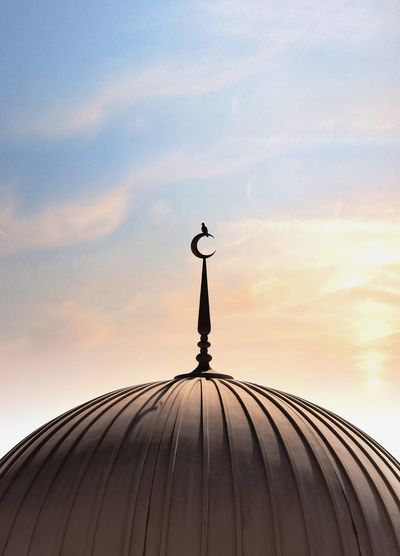 angle view of a bird stand on masjid against sky at sunset.