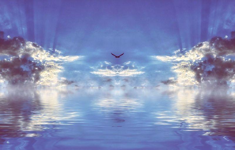 Bird flying over water against sky
