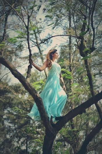 A free woman is a strong woman. Tree Dress Young Adult Adult Fashion Only Women One Woman Only Branch One Person Beauty Standing Young Women One Young Woman Only Adults Only People Full Length Women Elégance Leaf Fashion Model Beautiful Woman Portrait Beautiful People Outdoors