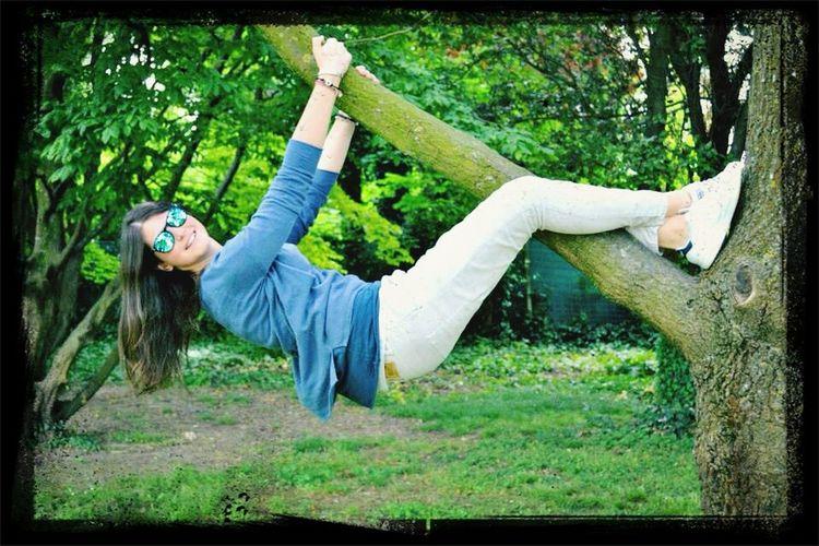 Like a koala! Smile Goodtime That's Me Tree