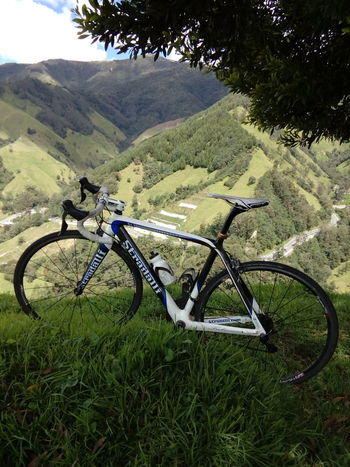 Siempre existira la tranquilidad cuando vas acompañado de tu mejor compañera , que nunca te dejara sólo🚴🚴🚴🚴🚴 Bicycle Cycling Day Nature Nature On Your Doorstep Tree Outdoors No People