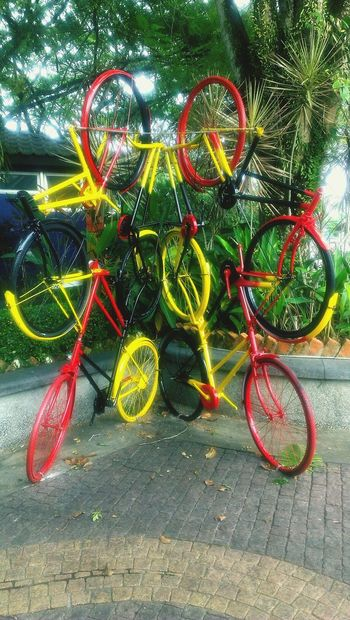 Bicycle Staggered Colorful Outdoors City Life Waterfront Trail City Of Hornbill