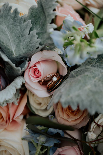 Close-up of wedding rings on rose bouquet