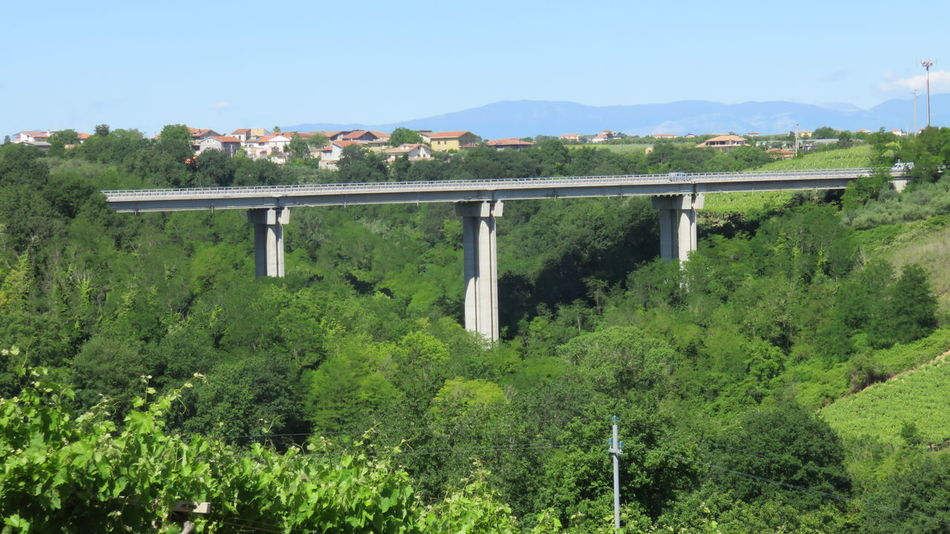motorway viaduct Architecture Beauty In Nature Bridge Built Structure Construction Green Green Color Growth Infrastructure Landscape Lush Foliage Mountain Nature Outdoors Plant Scenics Sky Traffic Tranquil Scene Tranquility Tree Viaduct