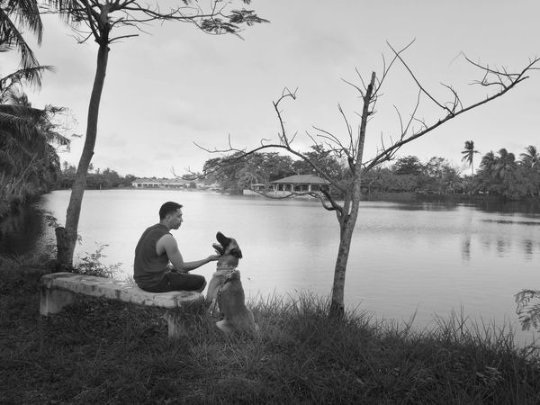 Lake Water Togetherness Outdoors Nature Sky Tree Day Mansbestfriend Dog Belgian Malinois Early Morning Sitting On A Bench Two People Reflection People Rear View Adult Men Women Adults Only Young Adult