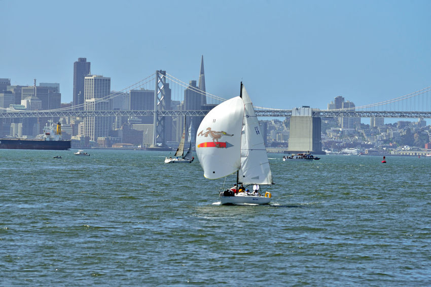 Sailing Middle Harbor 13 Port Of Oakland,Ca. Middle Harbor Waterfront♥ Sailboats Sailing San Francisco Bay Bay Bridge San Francisco Skyline Cityscape Skyscrapers Freighter Nautical Vessels Transamerica Pyramid Building Ferry Building Landscape_Collection Landscape_photography Open Sails A Day On The Bay Scenic Urban Skyline Yachting Sailing Boat Mast Yacht Regatta