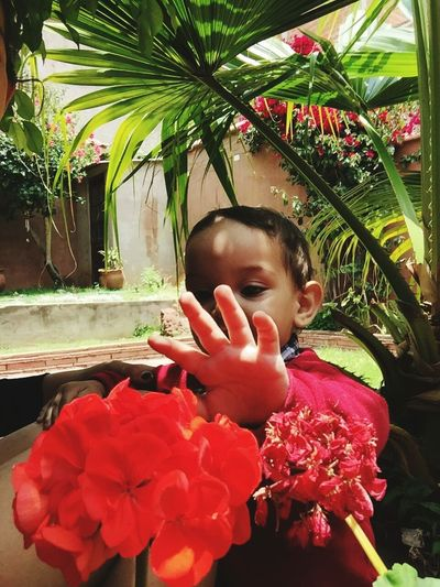Red One Person Child One Girl Only Children Only Childhood Flower Plant Outdoors People Nature Day Human Body Part