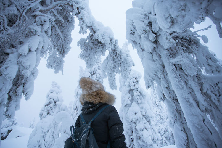 Rear view of backpack woman standing amidst frozen trees during winter