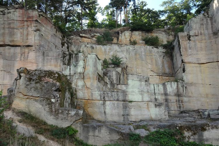 Tourist Attraction  Bad Dürkheim Krimhildenstuhl Rock Formation Felsenlandschaft Landscape Hiking Wandern Wanderziel Beauty In Nature Geology Structure Shapes And Forms Shapes And Lines Day Tree No People Outdoors Close-up