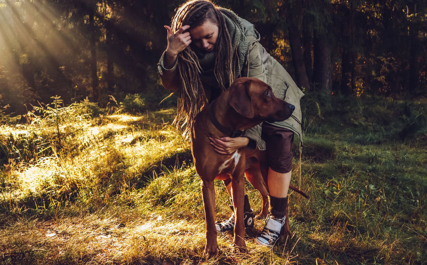 Young smiling woman with dreadlocks in autumn fall forest in the morning sunshine playing with a dog ridgeback One Person Land Real People Lifestyles Pets Plant Leisure Activity Forest One Animal Domestic Young Adult Mammal Animal Themes Tree Domestic Animals Animal Nature Dog Vertebrate Outdoors Pet Owner Dreadlocks Ridgeback