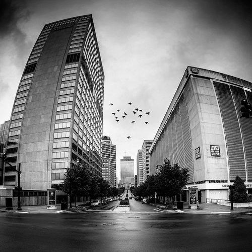 Black And White City Monochrome Urban