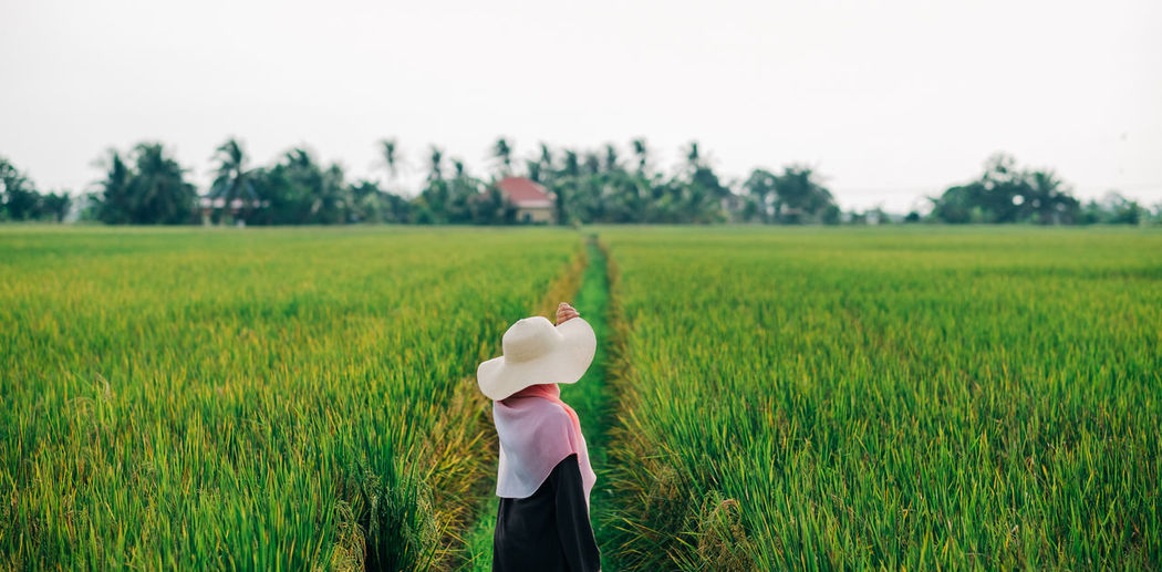 Rear view of person standing in farm against sky