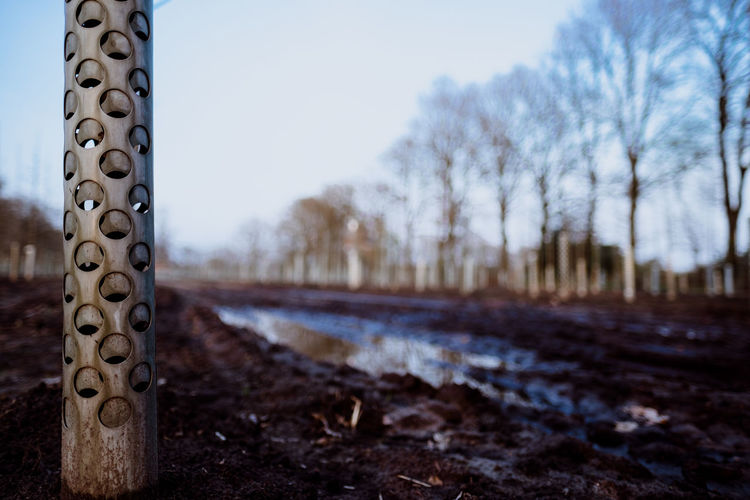IN THE FIELDS (muddy ways) Sky Tree Nature No People Focus On Foreground Day Land Field Plant Outdoors Metal Selective Focus Bare Tree Close-up Dirt Landscape Communication Wood - Material Environment Boundary Surface Level Fujifilm