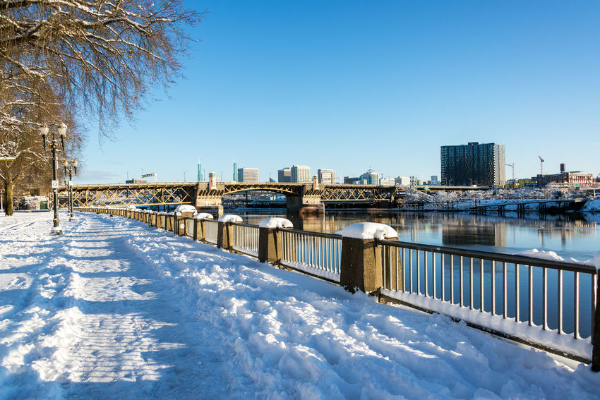 Waterfront park in Portland, Oregon covered in snow after a winter storm Architecture Bridges Downtown Ice Mirror Oregon Pacific Portland Reflection Tree Trees Willamette River  Winter Bridge Cold Colorful Gray Icy Northwest Old River Snow Town Waterfront White