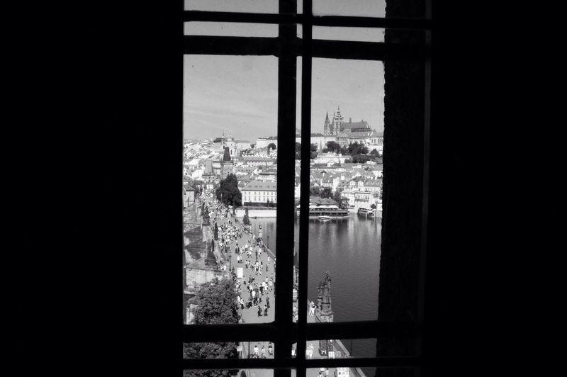 Window VSCO