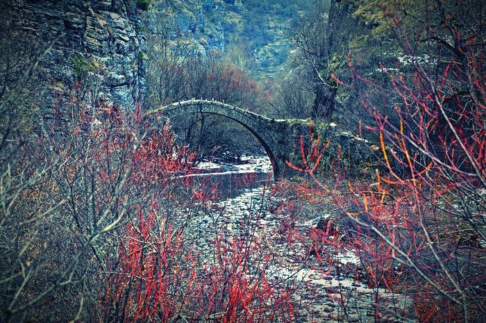 Showcase: January Old Bridge Old Path Bridges Bridge Fromwhereistand From My Point Of View From Where I Stand Wintertime Winter Riverside Nature Photography Nature_perfection Natural Beauty Nature Naturephotography Nature On Your Doorstep Naturescape Landscapes With WhiteWall