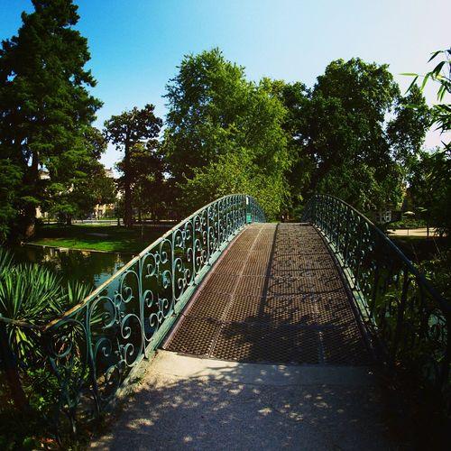 Jardinpublic Bordeaux, France Summer ☀