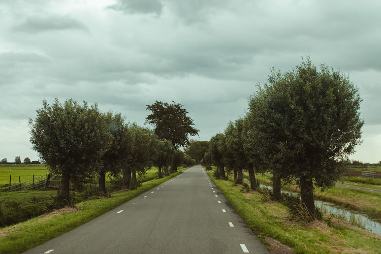 Netherlands Beauty In Nature Cloud - Sky Day Diminishing Perspective Direction Dividing Line Environment Growth Landscape Nature No People Outdoors Plant Road Sign Sky The Way Forward Tranquility Transportation Tree Treelined vanishing point