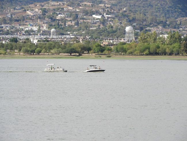 Transportation Nautical Vessel Mode Of Transport Day Outdoors Water Tree Nature Moored Lake No People Pedal Boat Sailing Animal Themes Parque Metropolitano De León Leon Guanajuato