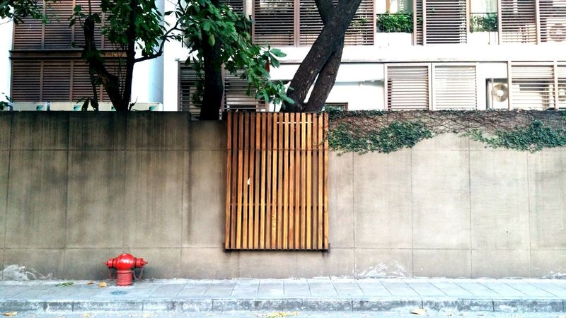 Wall and footpath. Bangkok street. Wall Street Wall Backgrounds Beautiful Thailand Park Morning Footpath Streetphotography Street Bangkok Architecture Built Structure Building Exterior Outdoors Day No People City Tree