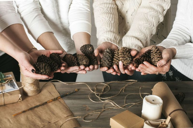 Midsection of people holding pine cones at home