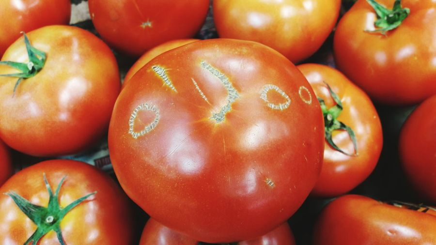 CLOSE-UP HIGH ANGLE VIEW OF TOMATOES