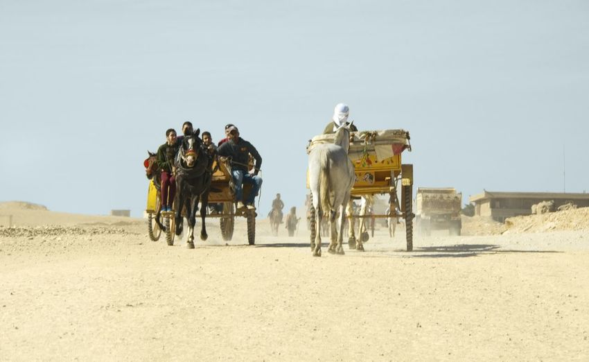 Horse Wagons Ancient Travel Destinations Nature Photography Nature_collection Natgeotravel Horse Riding Only Men Adult Adults Only Horseback Riding Desert Transportation People Domestic Animals Nature Sand Dune Mobility In Mega Cities