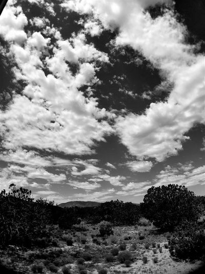 """""""God's Mountain"""" The dramatic clouds herald the way to the mighty Gallinas Peak in Central New Mexico. Mountain Clouds Clouds And Sky Cloudscape Blackandwhite Photography Blackandwhite Newmexico Newmexicoskies"""