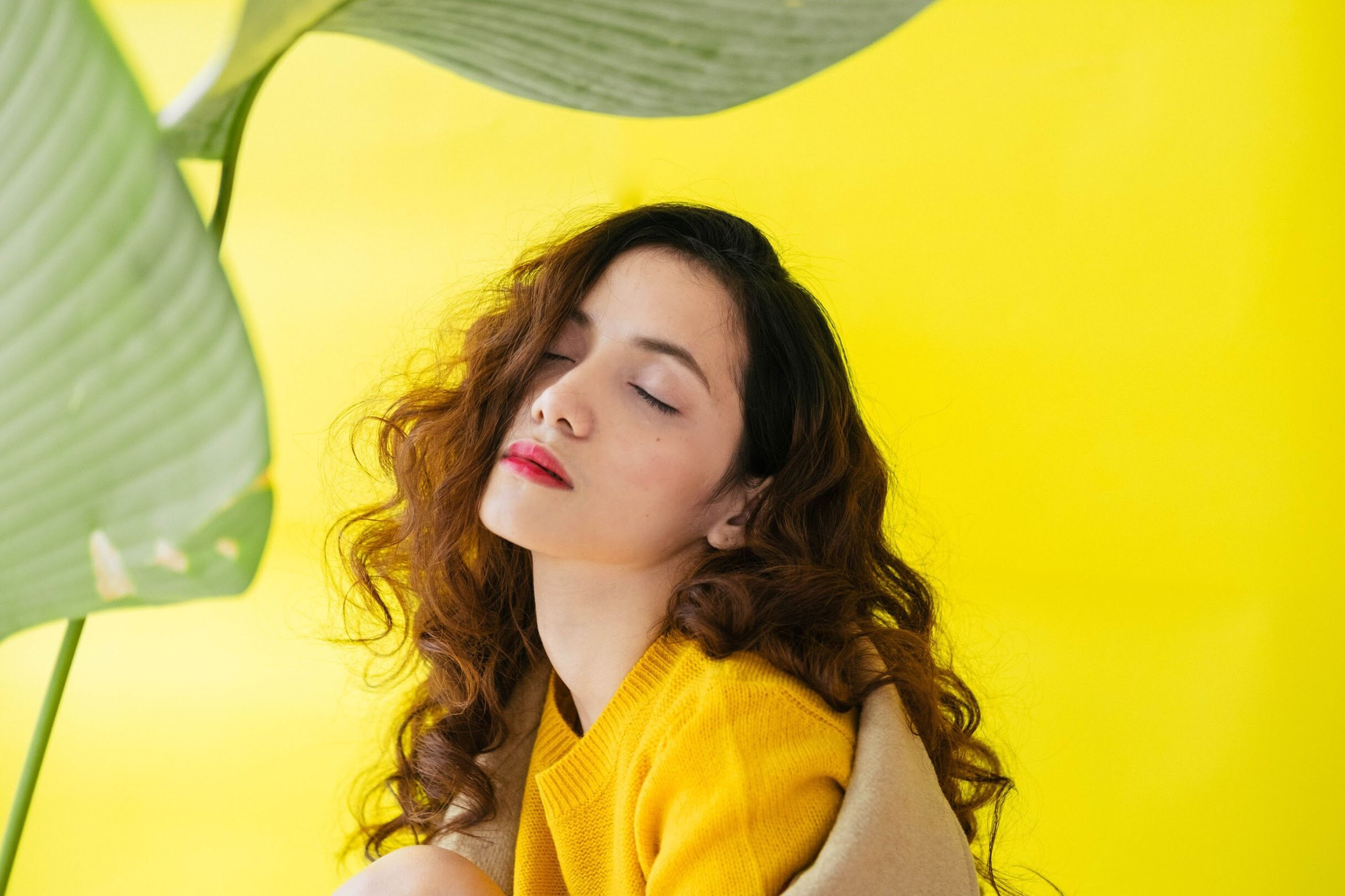 yellow, one person, brown hair, eyes closed, headshot, yellow background, one young woman only, young adult, colored background, one woman only, beauty, day, beautiful people, portrait, only women, beautiful woman, close-up, outdoors, people, young women, adults only, adult