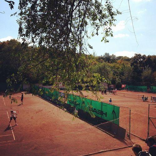 Tenniseurope Te3 U16 1 /4