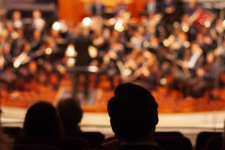 Rear view of people sitting at music concert