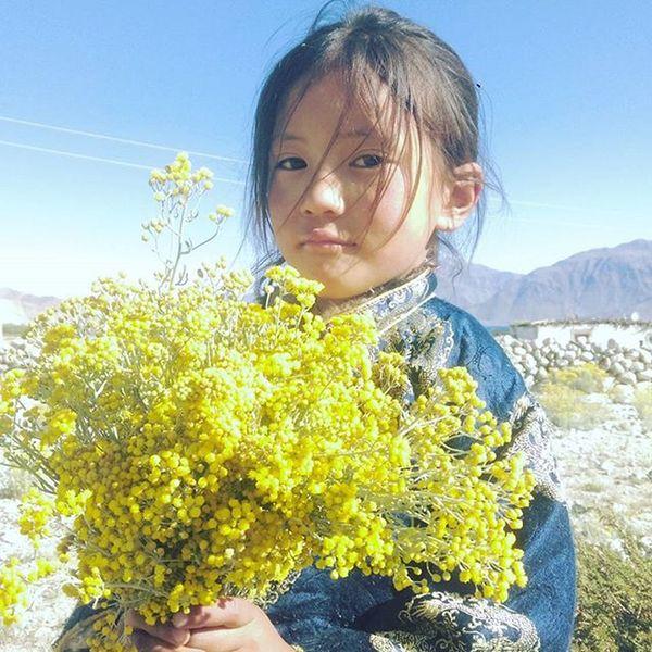 Leh Lehnladakh Mountains Potrait People Cute Cutekids Muchlove Beautiful Flowers Ladakh Travel