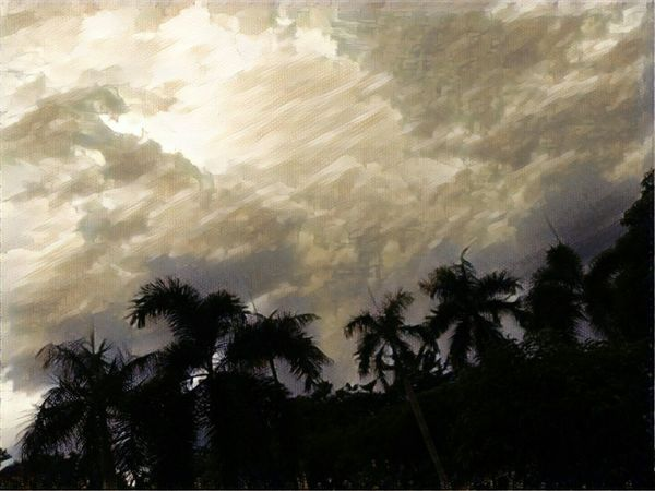 Rain cloud maybe😂😁 EyeEm Selects Perhubungan Udara #art Of Nature Cloud EyeEmNewHere EyeEm Nature Lover EyeEm Gallery EyeEm Selects Learning Photography Stilllearning Clouds And Sky Sky Rainclouds Follow first eyeem photo Followme Thankyou Likeforlike #likemyphoto #qlikemyphotos #like4like #likemypic #likeback #ilikeback #10likes #50likes #100likes #20likes #likere Like Dontknowwhatimdoing Sorryforthat Eyeem Market Eyem Gallery Tree Palm Tree Nature No People Low Angle View Day Sky EyeEm Ready   AI Now